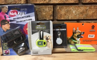 Keeping You and Your Pup Safe at Night:   Light Up the Night