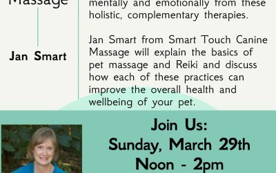 Reiki and Massage for your dog-Will be rescheduled